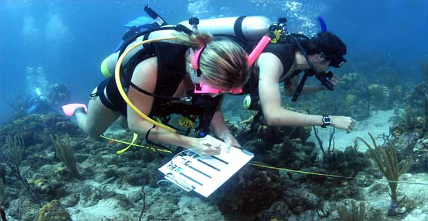 latest scholarships of marine biology for pakistani students