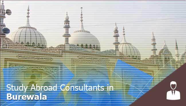 study abroad consultancy in burewala