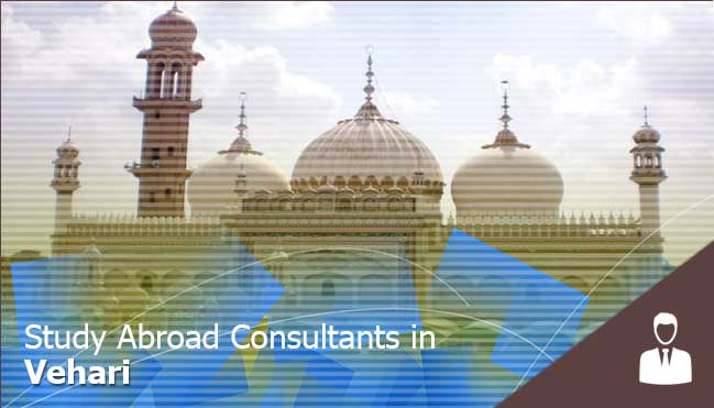 study abroad consultants in Vehari
